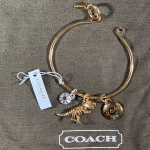 NWT! Rexy Coach Disc Hoop Bangle Charm Set